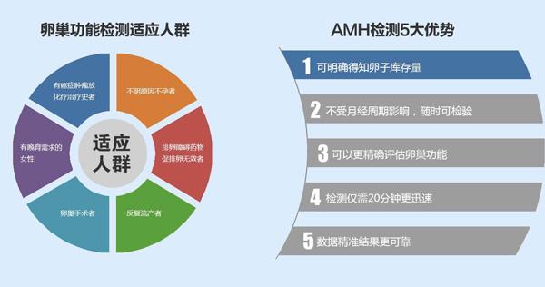 AMH-新-600.jpg